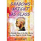 Shadows Bright as Glass: The Remarkable Story of One Man's Journey from Brain Trauma to Artistic Triumph by Amy Ellis Nutt