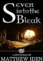 Seven Into the Bleak by Matthew Iden