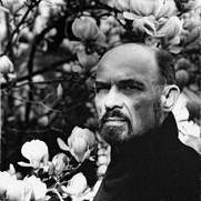 Author photo. Reid Yalom