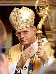 Author photo. Péter Cardinal Erdő in Budapest, 2011 / Photo by Thaler Tamás