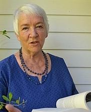 Author photo. Jenny Hobbs