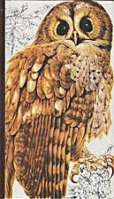 Guide des oiseaux by Sélection du Reader's…