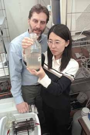 Author photo. Bruce E. Logan, the Kappe professor of environmental engineering and director of the project, and his lead researcher, Hong Liu, work in their controlled temperature lab. / Credit: Greg Grieco