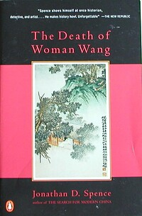 an analysis of the historical novel the death of woman wang by jonathan spence Shanahan and wang essay the death of woman wang by jonathan spence an analysis of the character wang lung in the historical fiction novel the good earth.