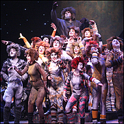 Author photo. 2006 production of Cats