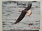 Bald Eagle by Denis D'Arbela