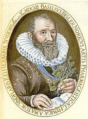 Author photo. J. Leypolt, 1613