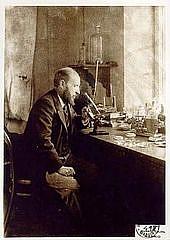 Author photo. Autorretrato mirando un microscopio (Public domain)