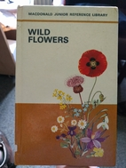 Wild Flowers by Unknown