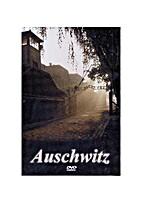 Auschwitz by Tadeusz Wudzki