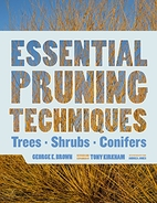Essential Pruning Techniques: Trees, Shrubs,…