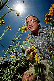 Author photo. Stephen L. Buchmann, Entomologist, University of Arizona